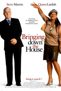 Bringing Down the House (2003)