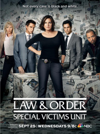 Law & Order: Special Victims Unit Season 15 (2013)