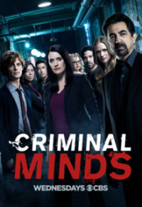 Criminal Minds Season 13 (2017)