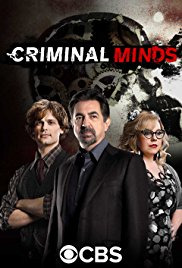 Criminal Minds Season 14 (2018)